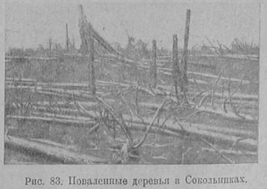 [Immagine: kolobkov_44_8.jpg]