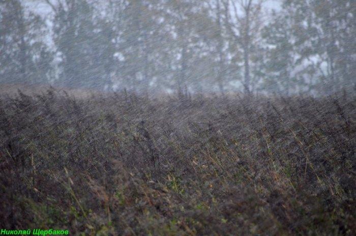 Венгрия погода в октябре-ноябре