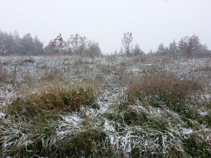 Погода в белгороде на 14 дней самый точный