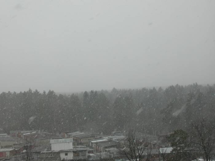 Погода сайт макеевка