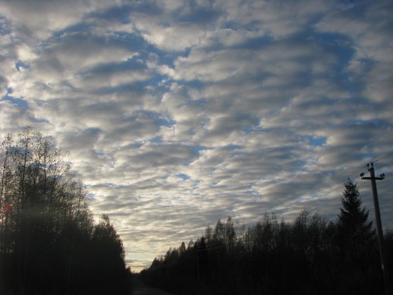 Погода в липецкой области чаплыгин на 14 дней