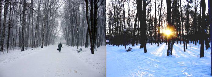 Картинки природы февраля